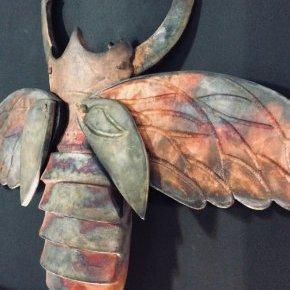 9 insecte o ruaud